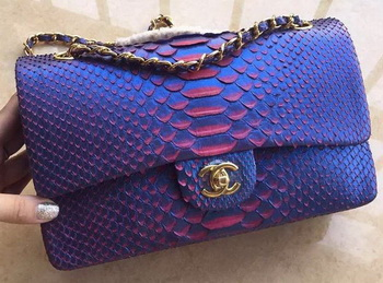 Chanel 2.55 Series Flap Bags RoyalBlue Original Python Leather A1112SA Gold