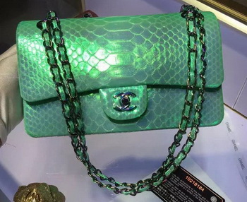 Chanel 2.55 Series Flap Bags Original Snake Leather A1112 Green