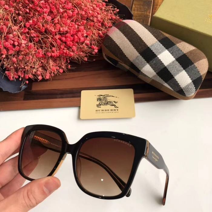 BurBerry Sunglasses Top Quality BB41024