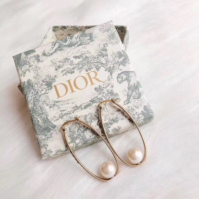Dior Earrings CE4900