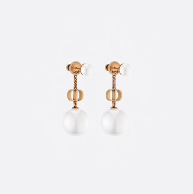Dior Earrings CE4888