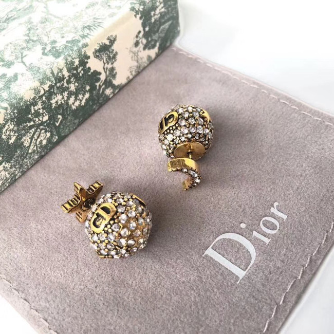 Dior Earrings CE4889