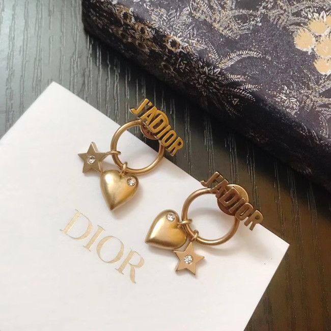 Dior Earrings CE4891