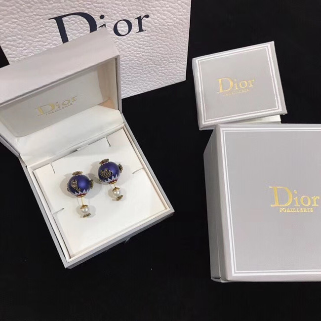 Dior Earrings CE4894