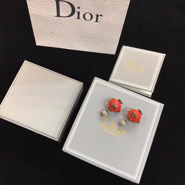 Dior Earrings CE4895