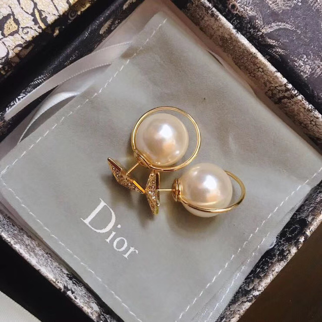 Dior Earrings CE4896