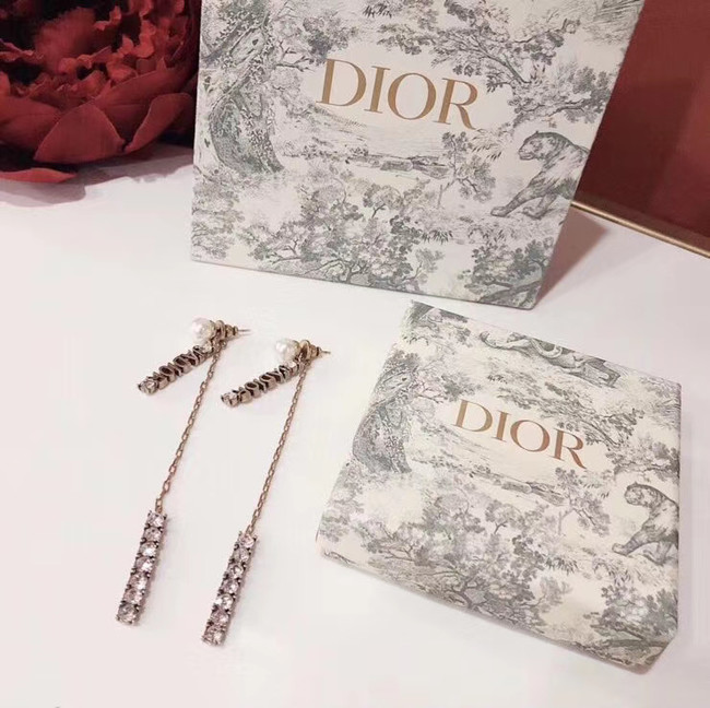 Dior Earrings CE4897