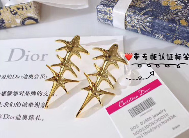 Dior Earrings CE4912