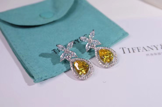 TIFFANY Earrings CE4911