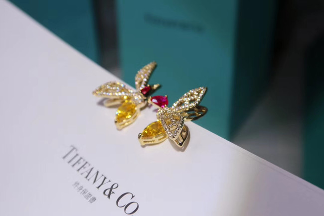 TIFFANY Earrings CE4921