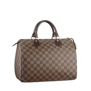 Louis Vuitton Damier Ebene Canvas Speedy 30 N41531